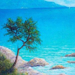 Albero al mare