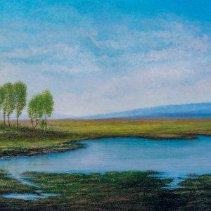 Paesaggio con stagno